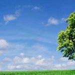 política de calidad y medio ambiente